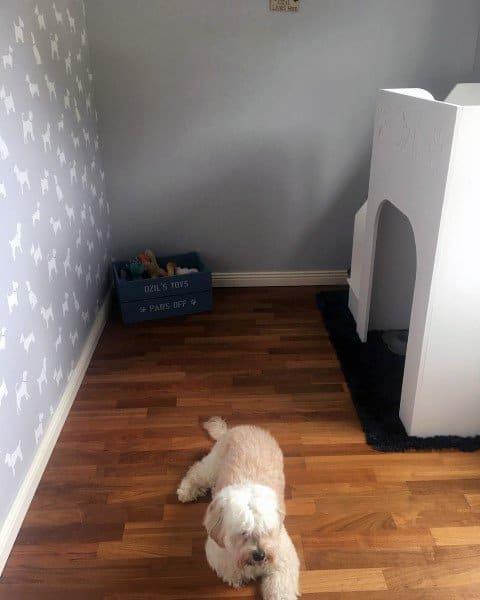 Private Dog Room Design Ideas