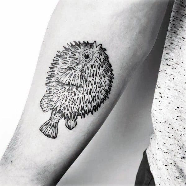 Puffer Fish Tattoo Designs For Gentlemen