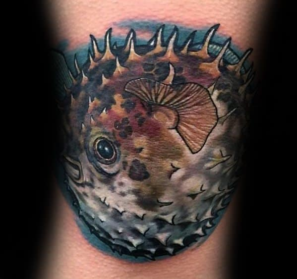 Puffer Fish Tattoos For Gentlemen