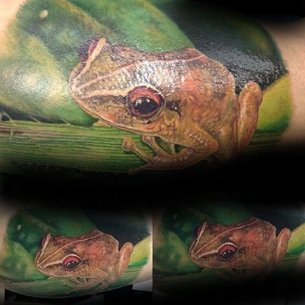 Quarter Arm Sleeve Tree Frog Mens Tattoo Ideas