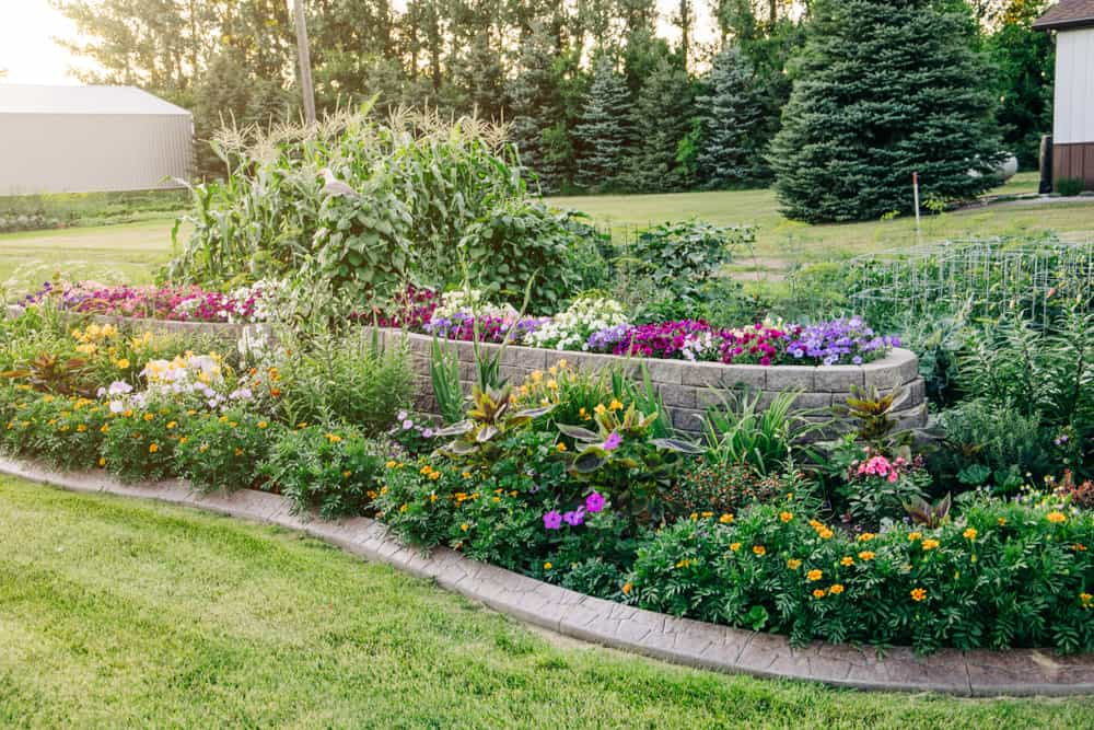 raised bed flower garden ideas 3