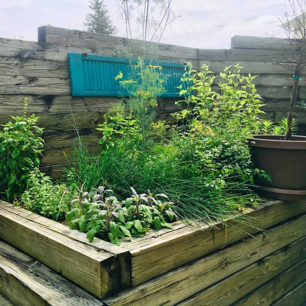 raised bed herb garden ideas wendeebauer