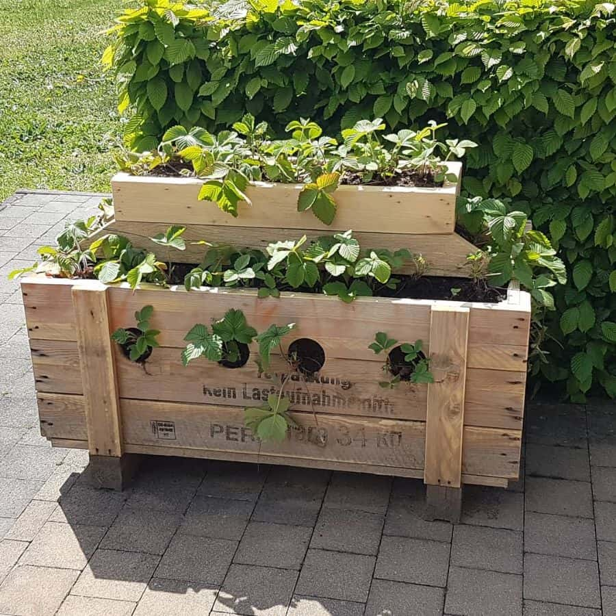 raised bed plant box pallet garden ideas angswoodcave