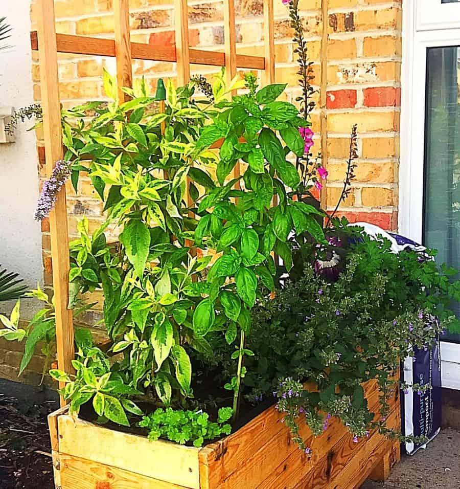 raised bed plant box pallet garden ideas documenting_no.12