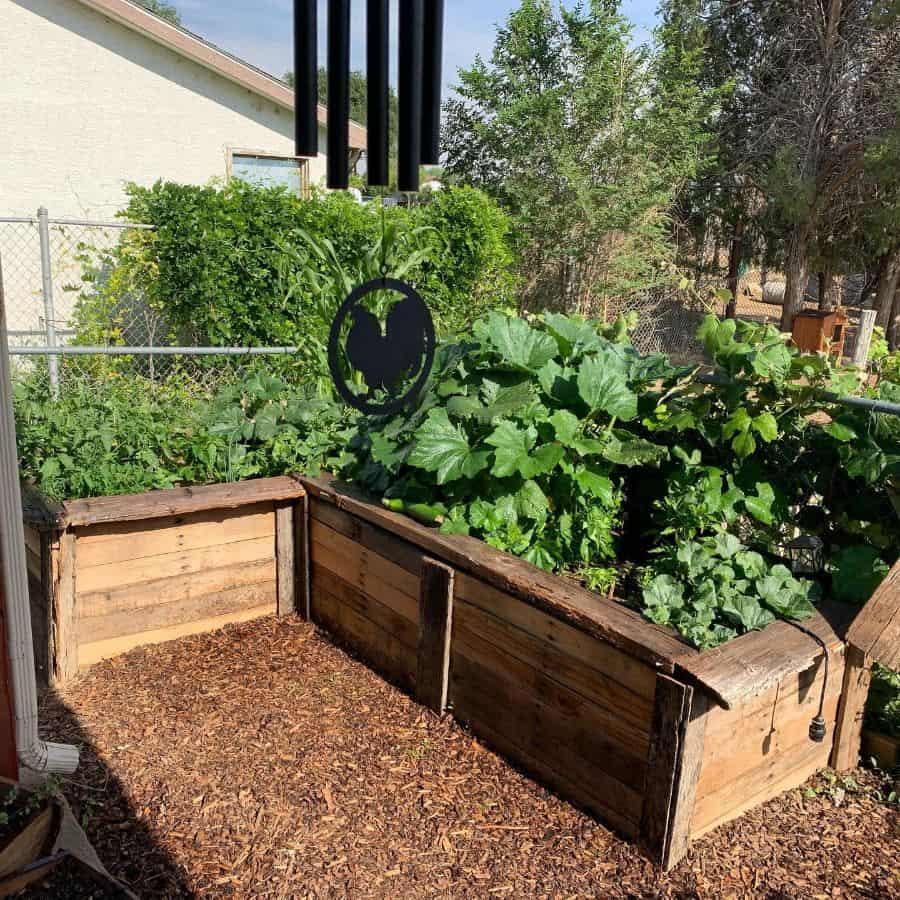 raised bed plant box pallet garden ideas helimechcolorado