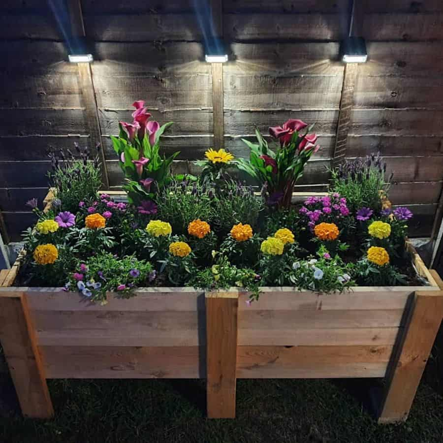 raised bed plant box pallet garden ideas holly_marie_shannon