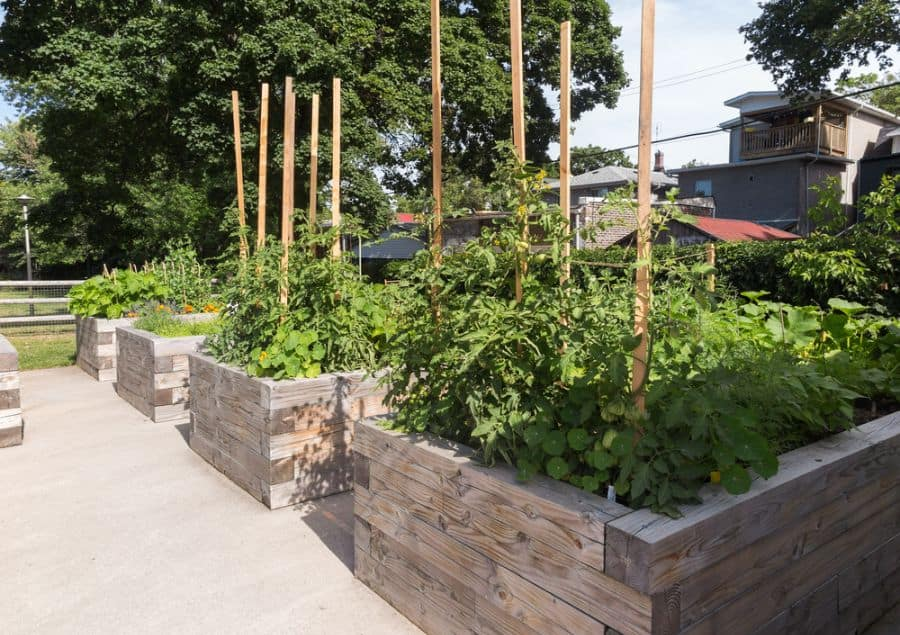 raised bed vegetable garden ideas 1