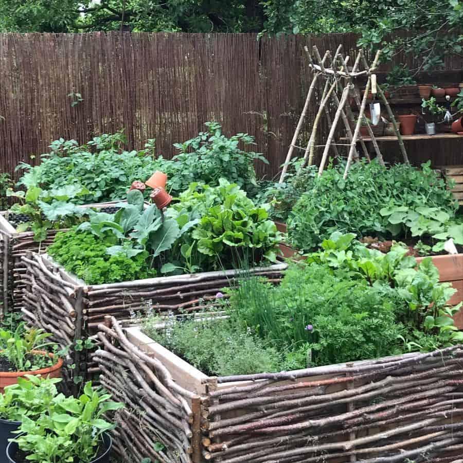 raised bed vegetable garden ideas orchardhouse_farmhouse