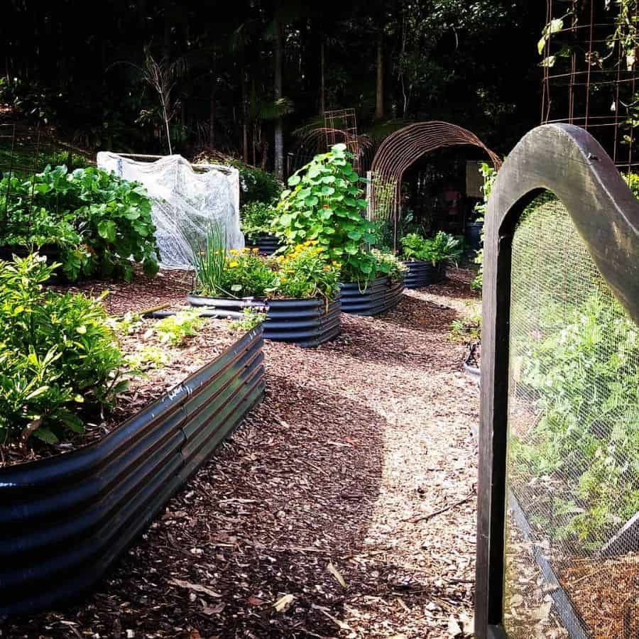 raised bed vegetable garden ideas patch_of_paradise_qld