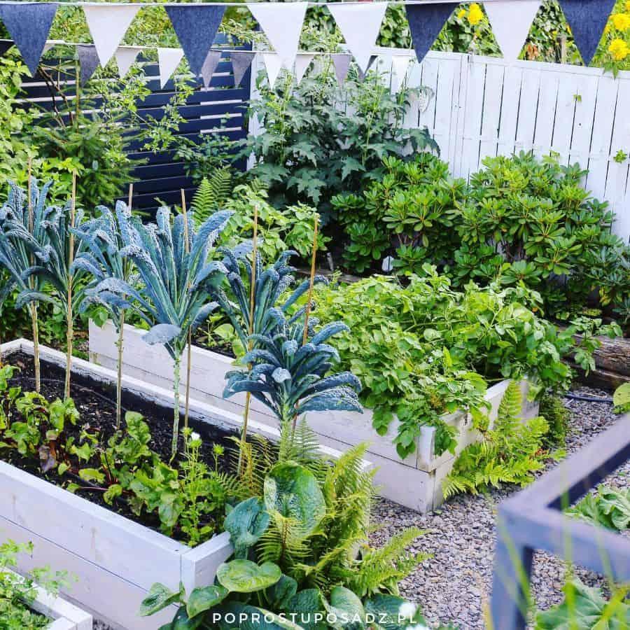 raised bed vegetable garden ideas poprostuposadz