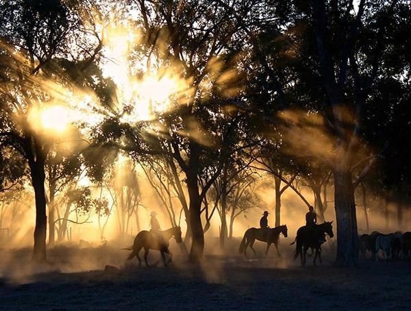 Rancher Jobs In Outdoor Industry