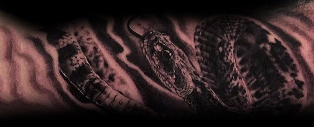 Rattlesnake Tattoo Designs For Men