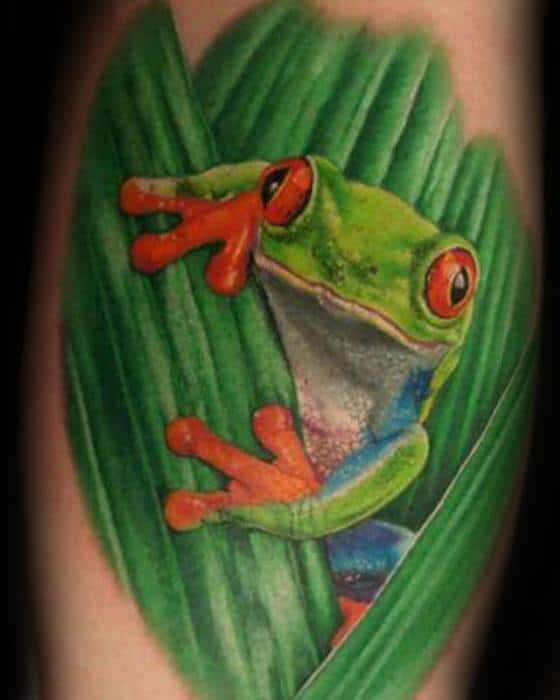 Realistic Arm Cool Male Tree Frog Tattoo Designs