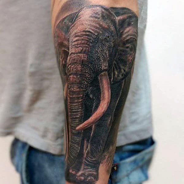 Realistic Elephant Tattoo Guys Arms