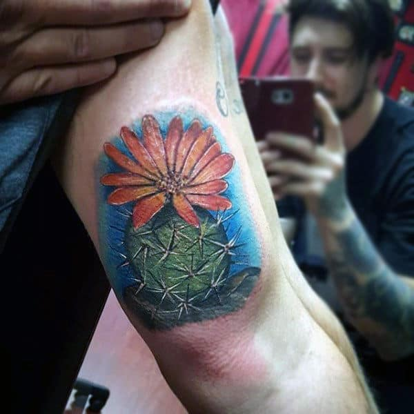 Realistic Flowering Cactus Plant Tattoo For Men On Bicep