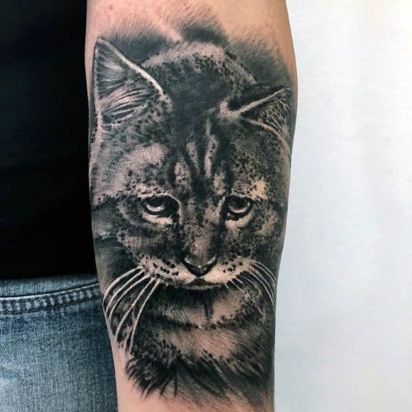 Realistic Inner Forearm Cat Tattoo For Males