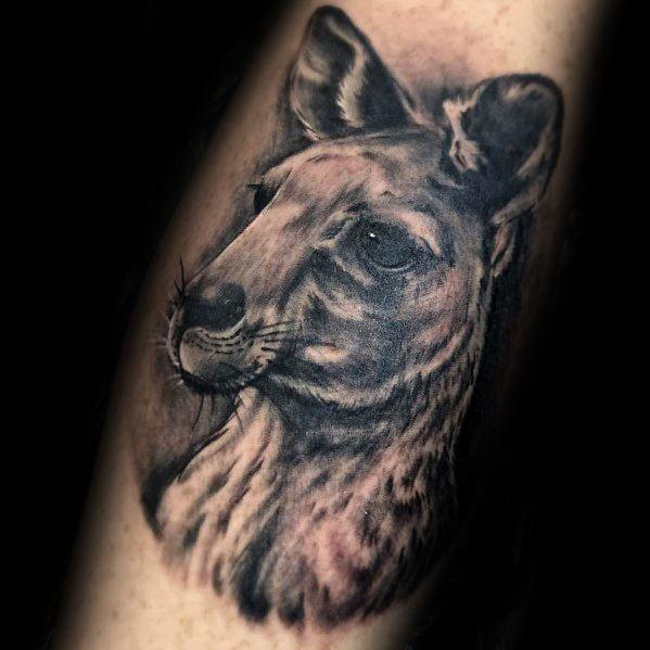Realistic Kangaroo Male Tattoos On Arm