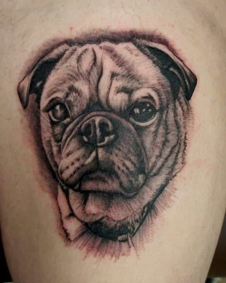 Realistic Pug Tattoo Chrisreynolds894