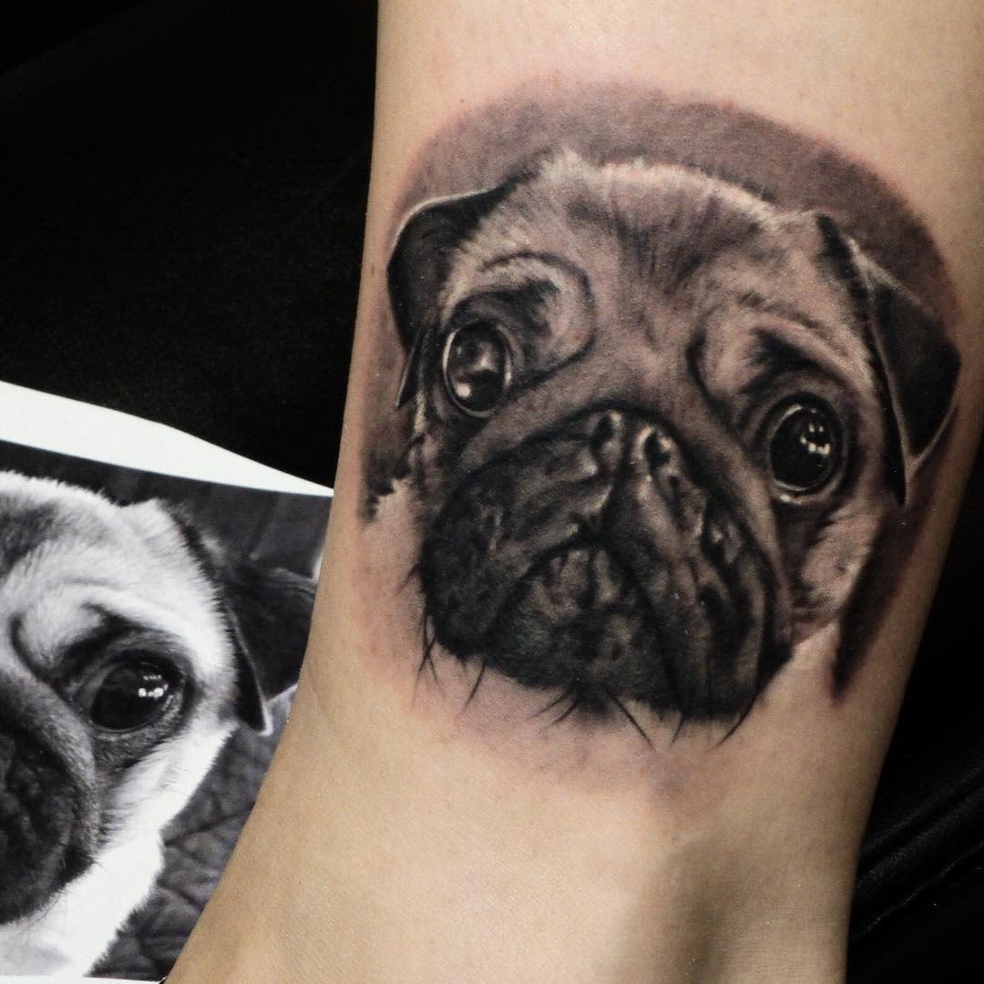 Realistic Pug Tattoo Tattoorobertosilva