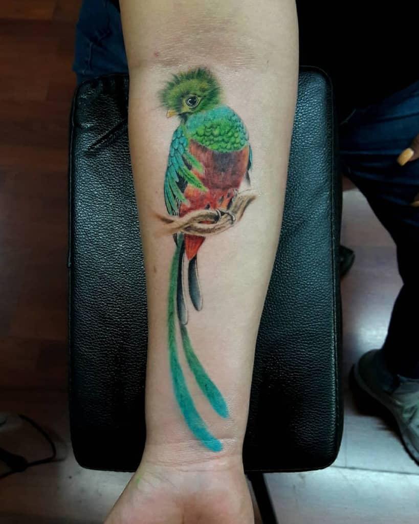 Realistic Quetzal Tattoos Luissilva Blackheart
