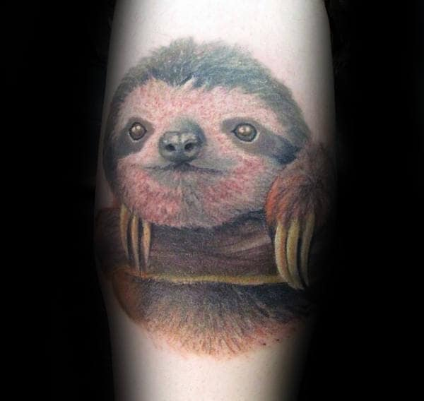 Realistic Sloth Face With Tree Branch Male Tattoos
