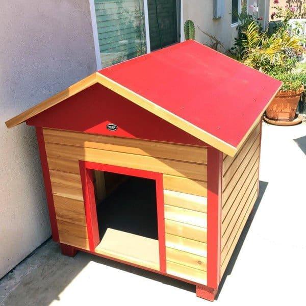 Really Cool Dog Houses