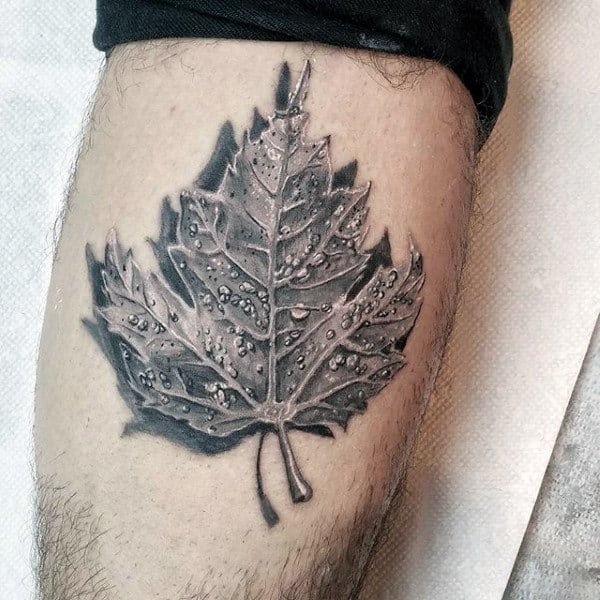 Realsitic 3d Maple Leaf Shaded Black And Grey Tattoo On Arm
