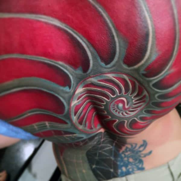 Red And Grey Mens Full Back 3d Fibonacci Spiral Tattoos