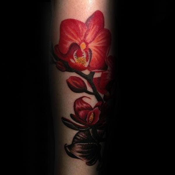 Red Orchid Flower Mens Forearm Tattoos