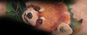 60 Red Panda Tattoo Designs For Men – Animal Ink Ideas