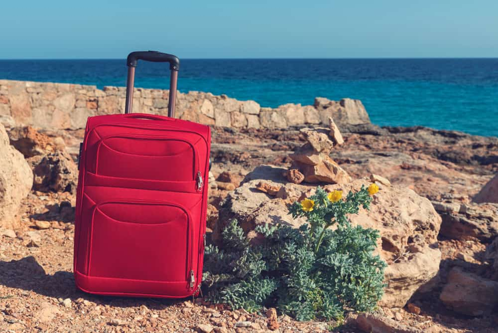 red suitcase and yellow horned poppy on a rocky sea shore