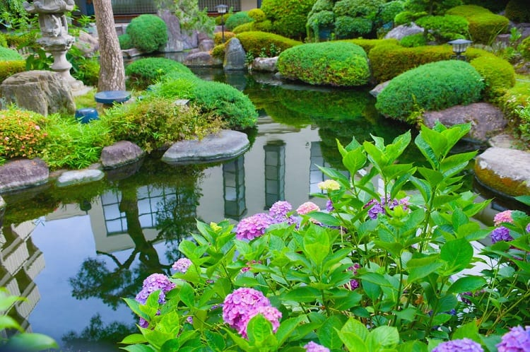 Relaxing Backyard Garden Pond