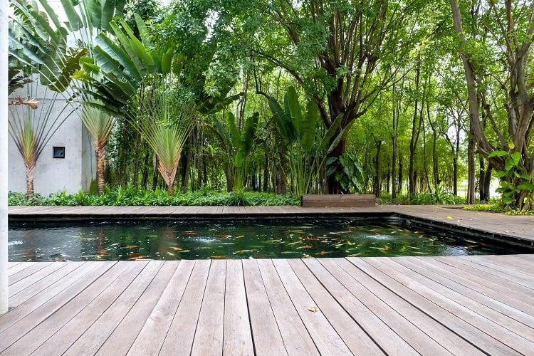 Garden Fish Pond With Wooden