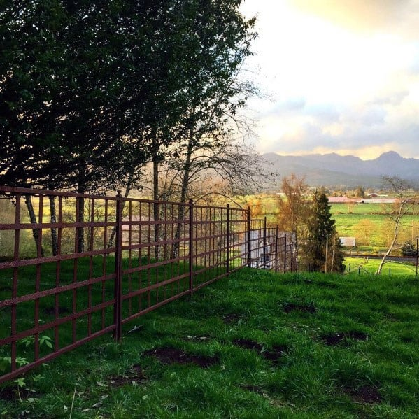 Remarkable Ideas For Dog Fence