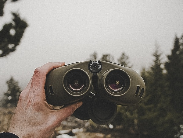 Review Steiner Military Marine 10x 50 Binoculars