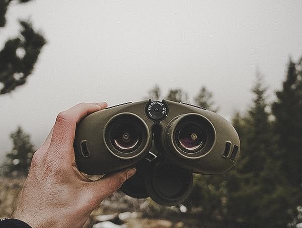 Review Steiner Military Marine 10x 50 Binoculars