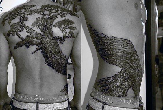 Ribs And Back Bonsai Tree Male Tattoo Idea Inspiration