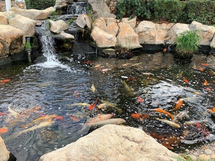 Rock Landscape Backyard Koi Pond