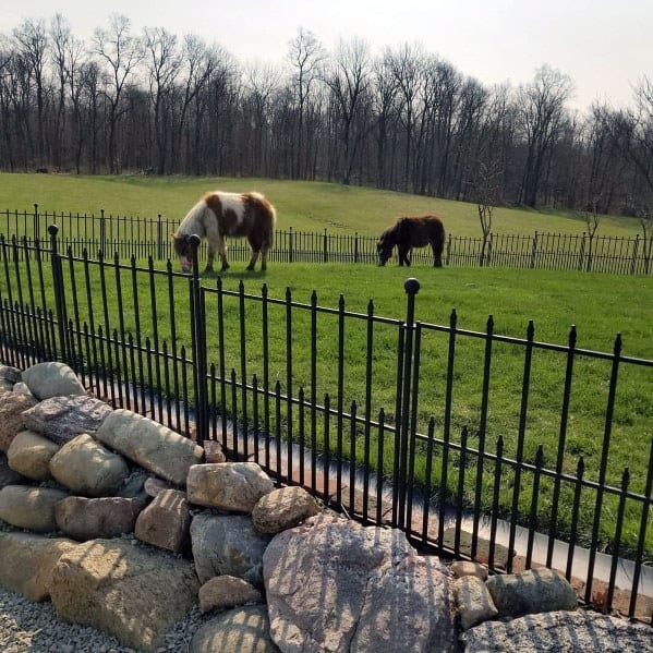 Rocks With Wrought Iron Dog Fence Ideas