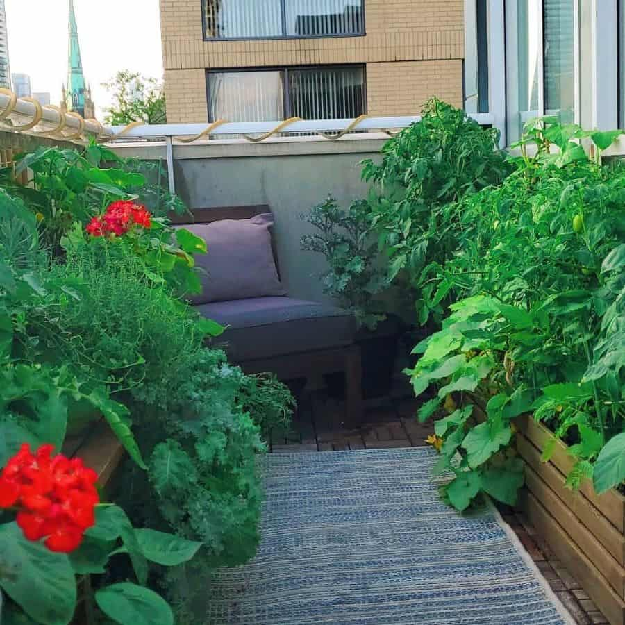 rooftop or balcony vegetable garden ideas croppinwithky