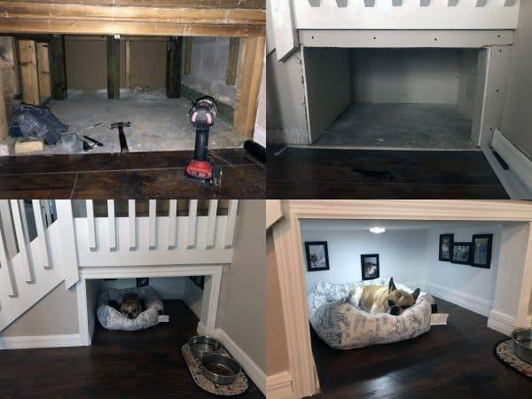 Room Designs For Dog