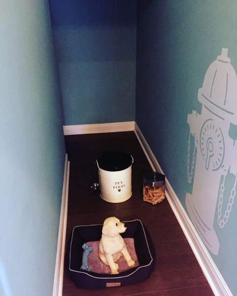 Room Ideas For Dogs