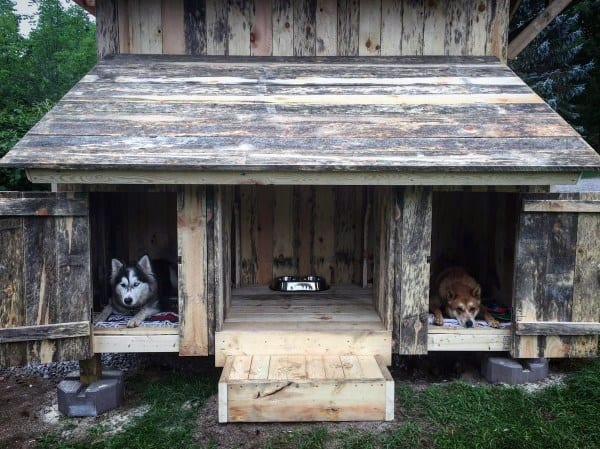 Rustic Double Cool Dog Houses