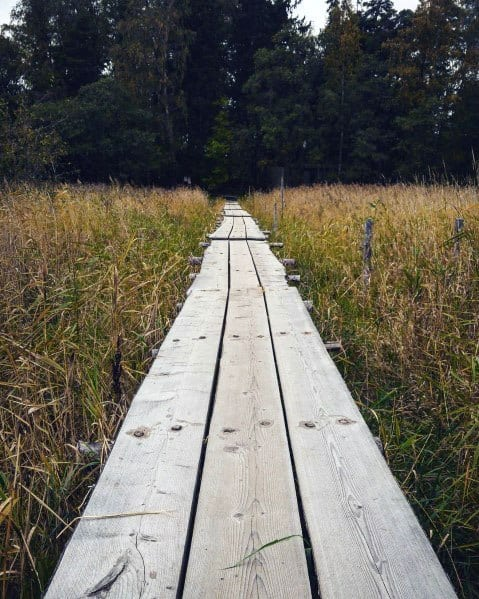 Rustic Wooden Long Boards Walkway Ideas