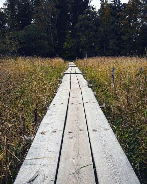 Rustic Wooden Long Boards Walkway Ideas