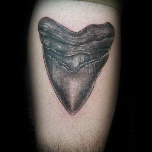 Shark teeth tattoo designs