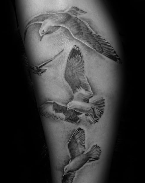 Shaded Black And Grey Ink Guys Seagull Arm Tattoo