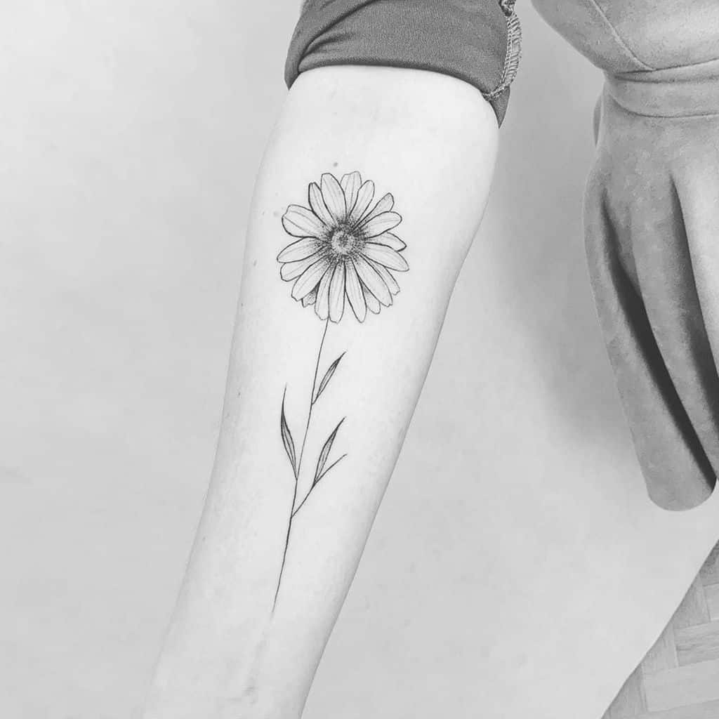 Forearm tattoo black and grey shading fine line delicate daisy