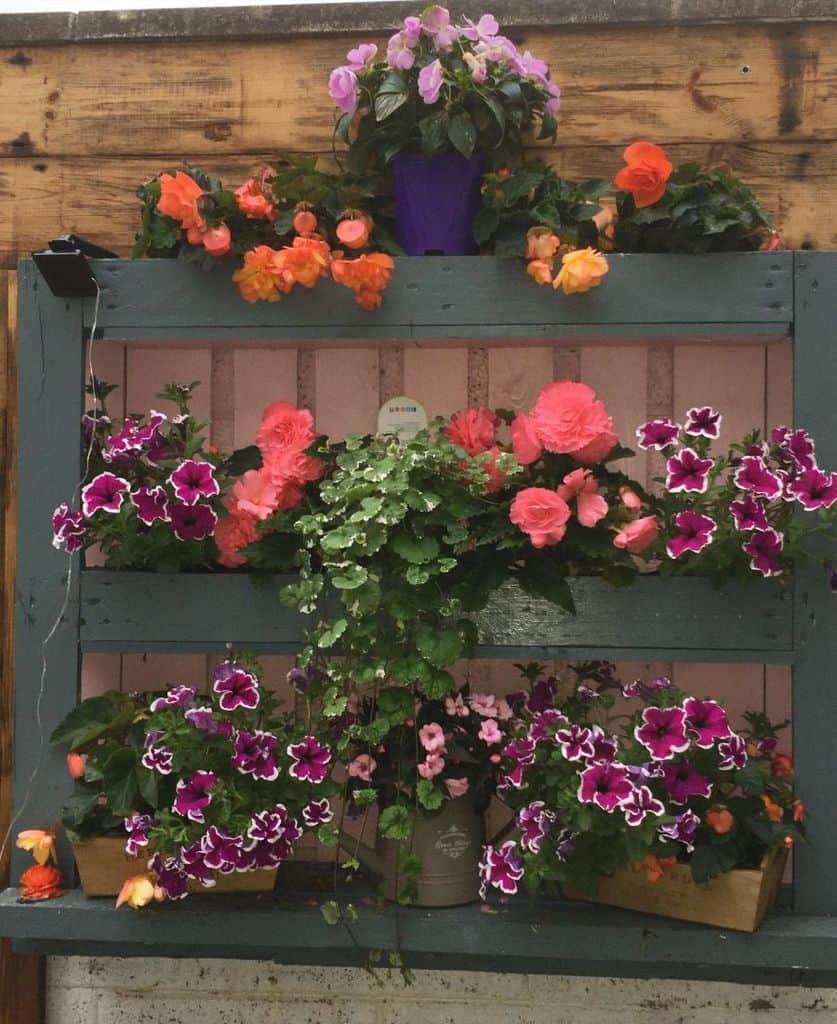 shelf and pot hanger pallet garden ideas bernadette_lomasney
