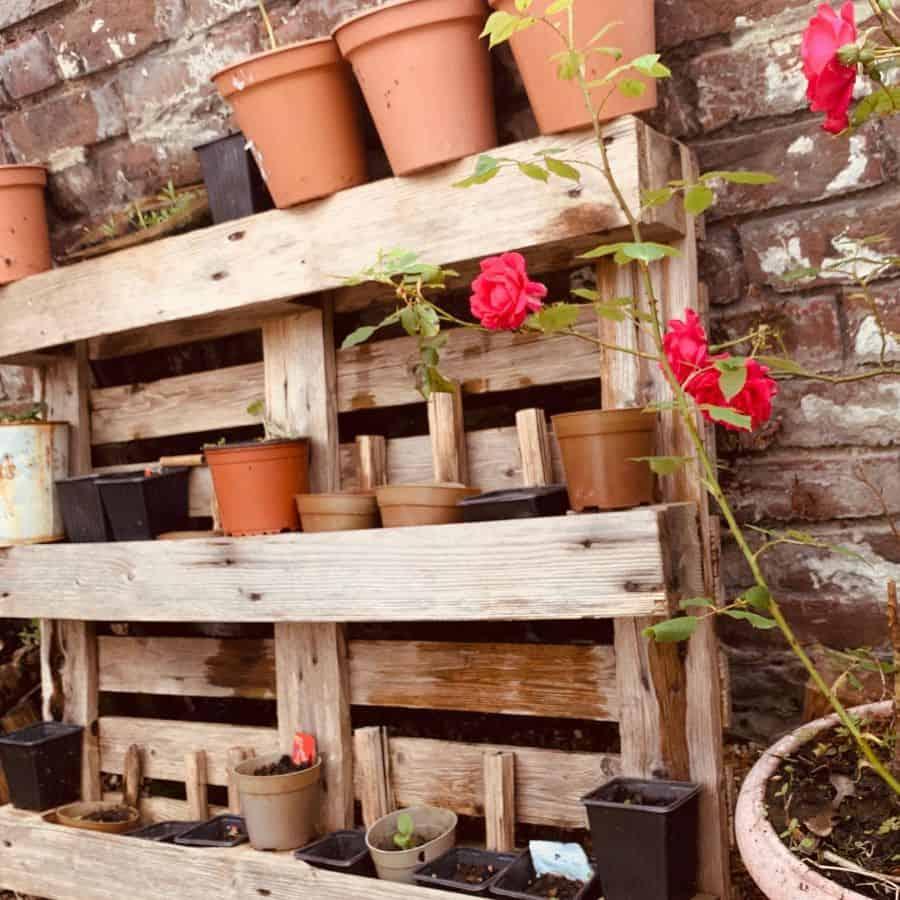 shelf and pot hanger pallet garden ideas ksind86